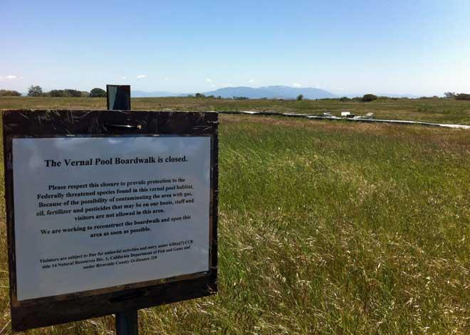 Santa Rosa Plateau – Vernal Pools