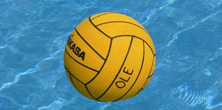 polo-ball