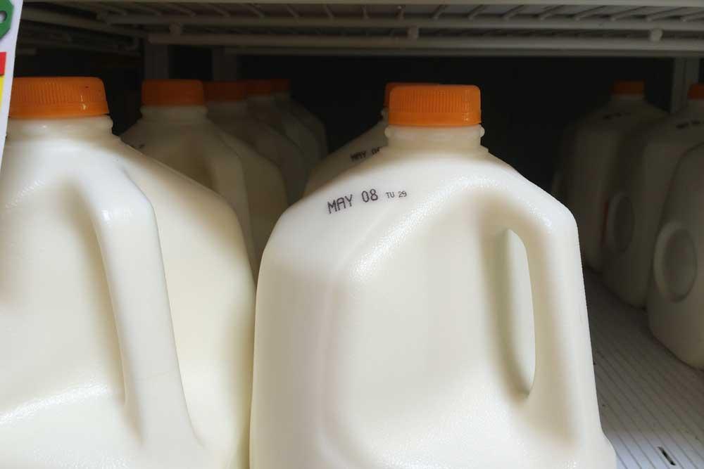 ffl-milk-exp-2