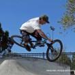 Harada Heritage Skatepark – Eastvale
