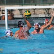 RCC Men's Water Polo vs. West Valley – Oct 24, 2015