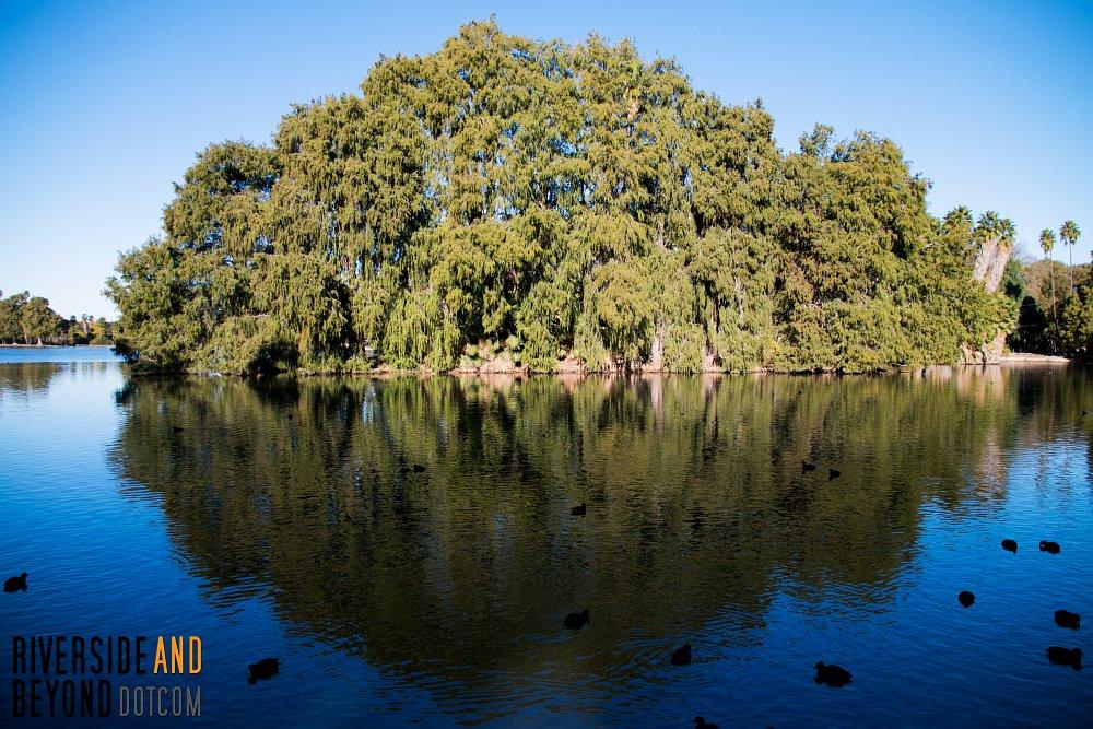 Fairmount Park - Riverside