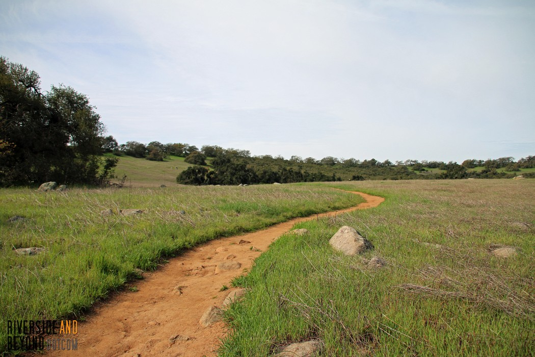 Santa Rosa Plateau Vernal Pool Trail