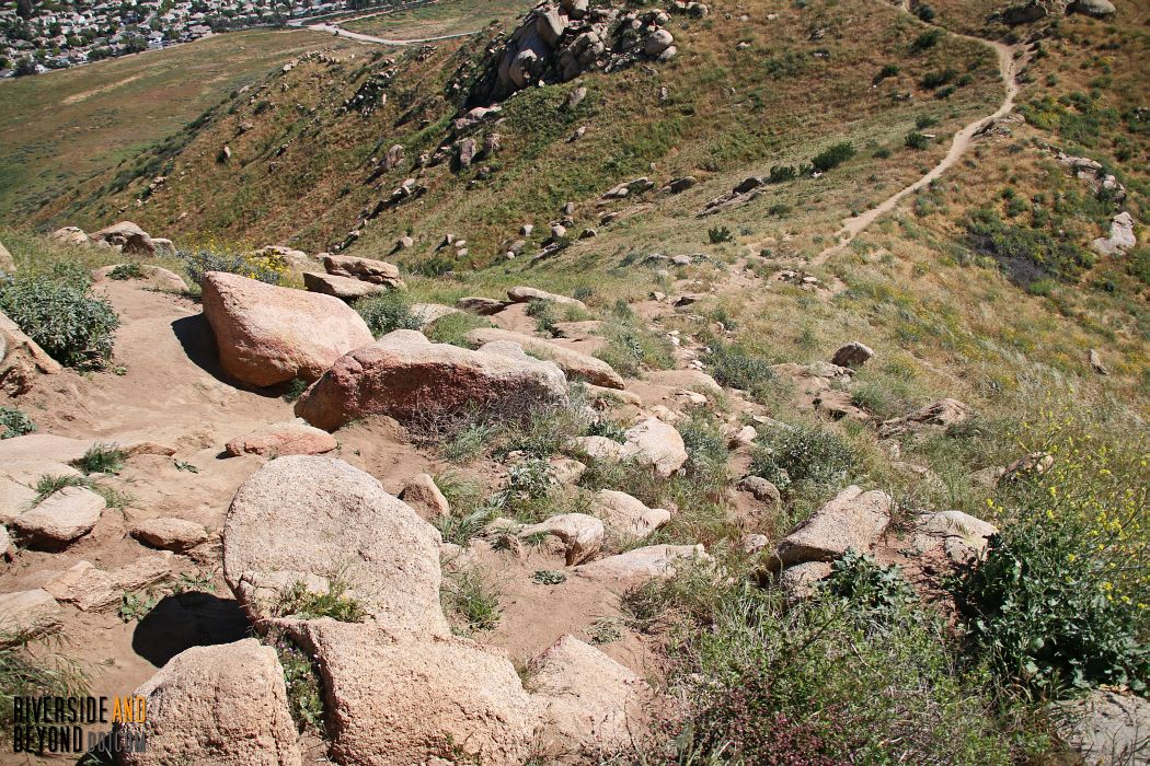 "Box Springs Mountain - Moreno Valley ""M"" Hike"