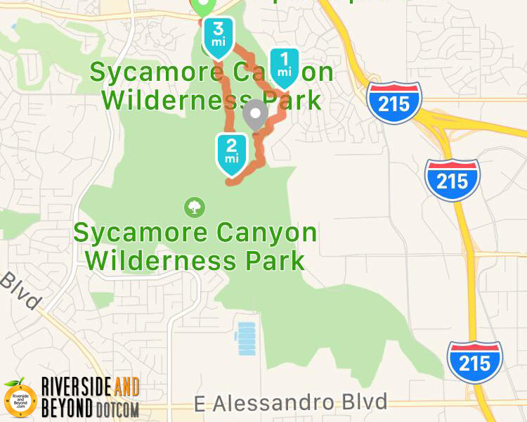 First Hike at Sycamore Canyon